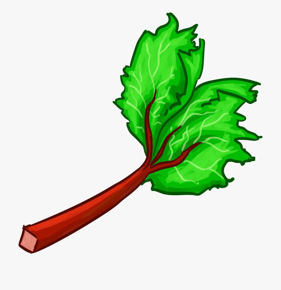Profile photo of Rhubarb