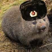 Profile photo of TheKommissar